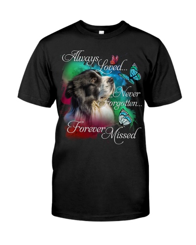 Border Collie-02-Forever Missed