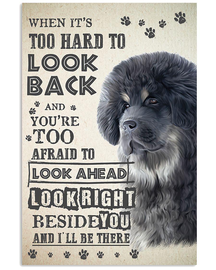 Tibetan Mastiff - Look Back 24x36 Poster