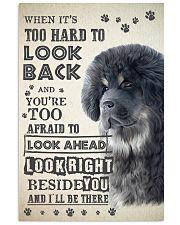 Tibetan Mastiff - Look Back 24x36 Poster front