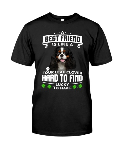 Cavalier King Charles Spaniel-Best Friend