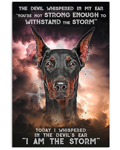 Doberman - Storm