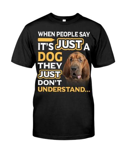 Bloodhound-They Don't Understand
