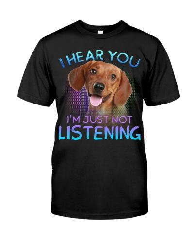 Dachshund-02-I Hear You