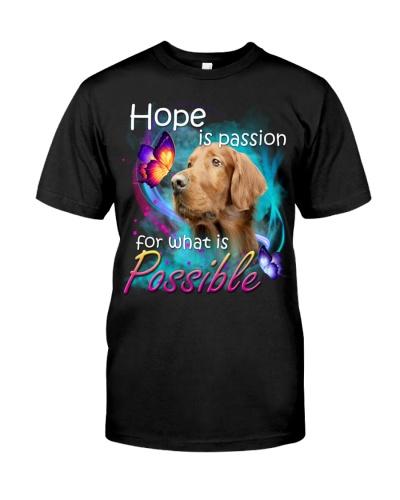 Irish Setter-02-Hope Is Passion