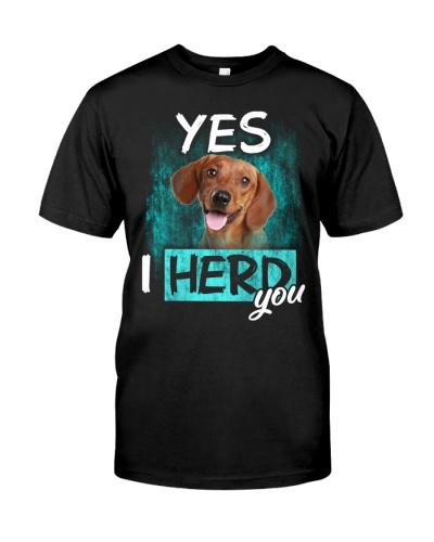 Dachshund-02-I Herd You
