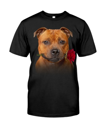 Staffordshire Bull Terrier-Rose