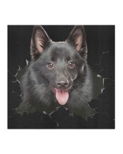 Schipperke-Hole Crack Cloth face mask aos-face-mask-coverlet-lifestyle-front-02