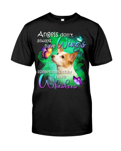 Jack Russell Terrier-02-Have Whiskers