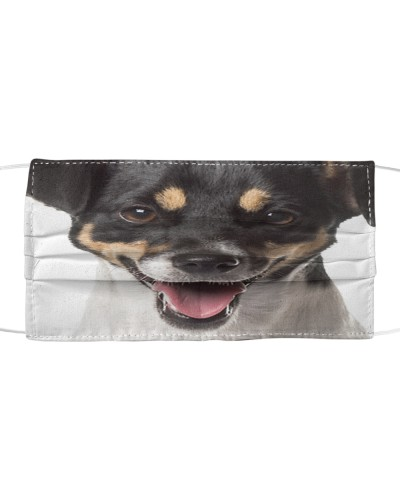 Jack Russell Terrier-02-Face Mask