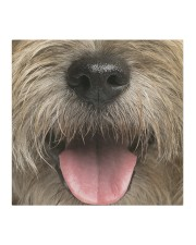 Cairn Terrier-Mask Mouth Cloth face mask aos-face-mask-coverlet-lifestyle-front-02