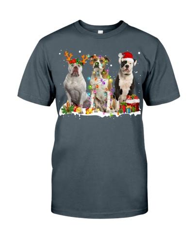 American Bulldog-Snow-Christmas