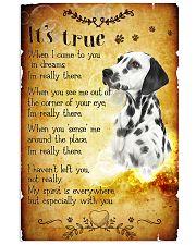 Dalmatian - True Vertical Poster tile