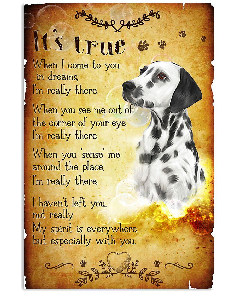 Dalmatian - True 24x36 Poster