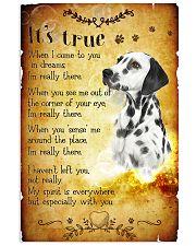 Dalmatian - True 24x36 Poster front