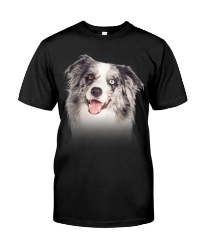 Blue Merle Collie - Only Face