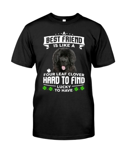 Newfoundland-Best Friend