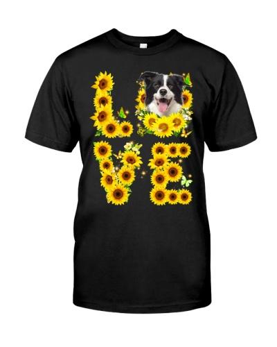 Border Collie-Love Sunflower