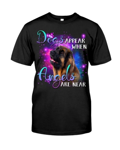 Leonberger-02-Angels Are Near