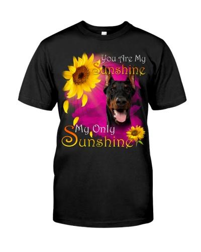 Doberman-Face-My Sunshine