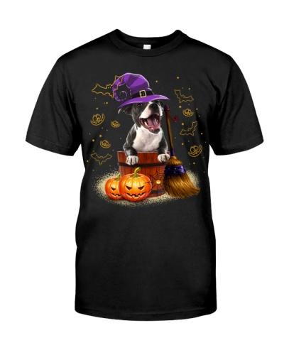 Staffordshire Bull Terrier-Halloween-02