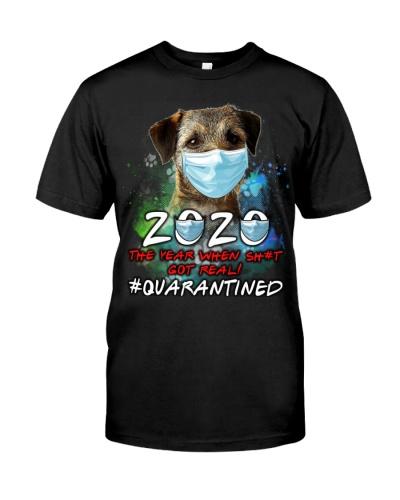 Border Terrier-Quarantined