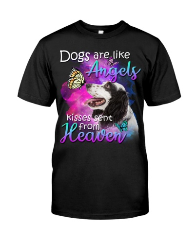 English Setter-From Heaven