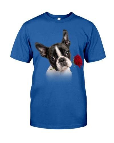 Boston Terrier-Rose