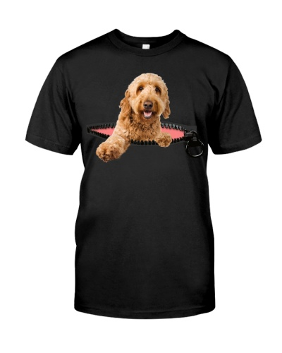 Goldendoodle-Zip