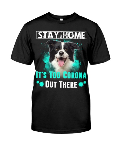 Border Collie-Stay Home