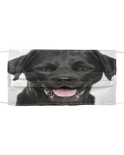Labrador-Face Mask