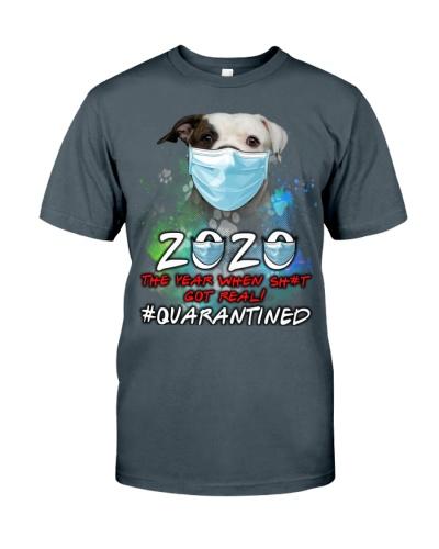 American Bulldog-Quarantined