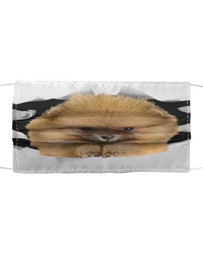 Pomeranian-Face Mask-Torn03