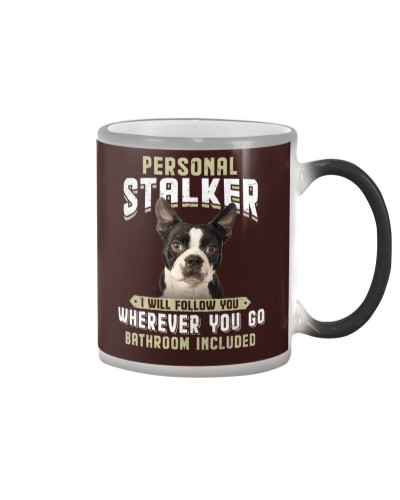 Boston Terrier - Stalker