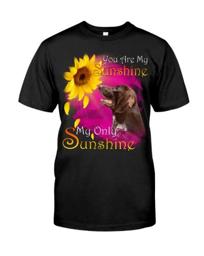 German Shorthaired Pointer-My Sunshine