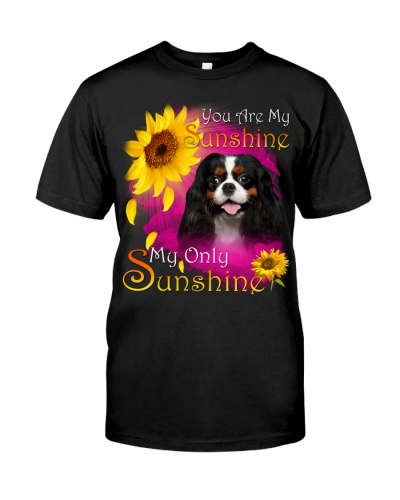 Cavalier King Charles Spaniel-Face-My Sunshine