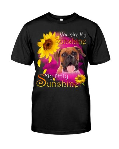 Boxer-Face-My Sunshine
