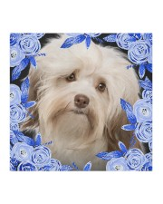 Havanese-02-Blue Mask Cloth face mask aos-face-mask-coverlet-lifestyle-front-02
