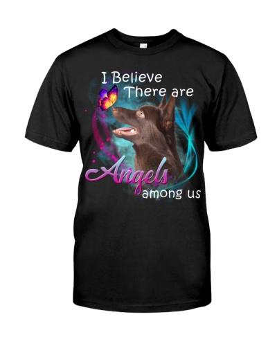 Australian Kelpie-Angels Among Us
