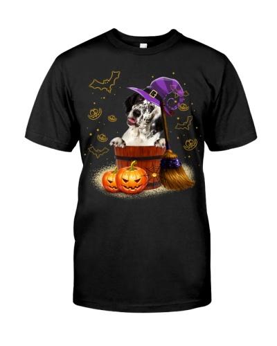 English Setter-Halloween-02