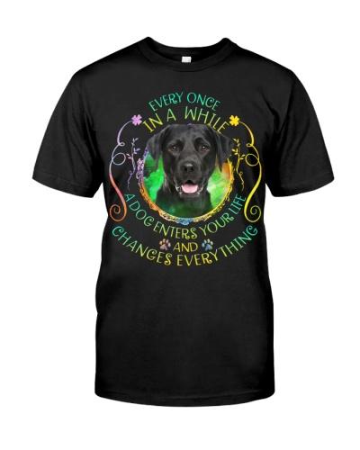 Labrador-Changes Everything