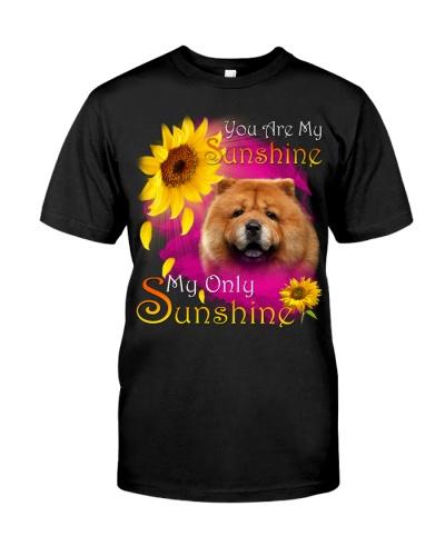 Chow Chow-Face-My Sunshine