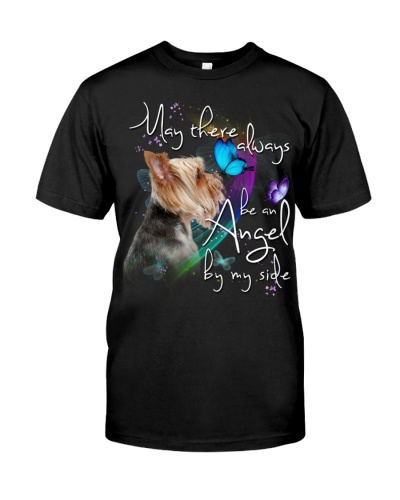 Yorkshire Terrier-An Angel