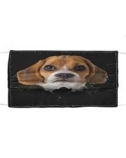 Beagle-Hole Crack Cloth face mask front