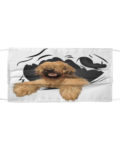 Briard-Face Mask-Torn07