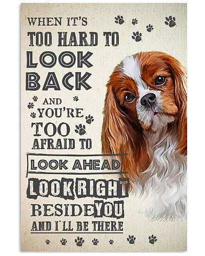 Cavalier King Charles Spaniel - Look Back