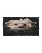 Morkie-Hole Crack Cloth face mask front