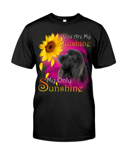 Newfoundland-My Sunshine
