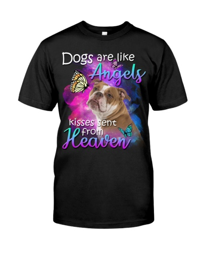 English Bulldog-From Heaven