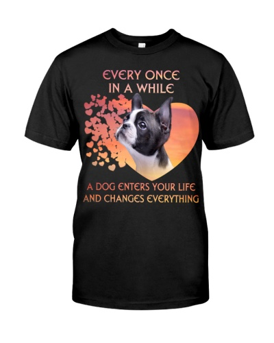 Boston Terrier-Enters Your Life