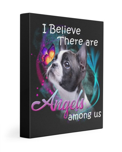 Boston Terrier-Canvas Angels